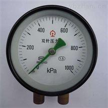 客室雙針壓力表YZS-102
