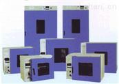 数显式电热恒温干燥箱