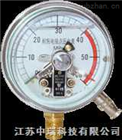 ZRYx系列电接点压力表