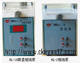 实验型恒流泵, HL-2S实验型恒流泵厂家直销