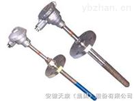 WRE-440MM耐磨阻漏热电偶
