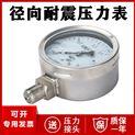 径向耐震压力表厂家价格 1.6MPa 2.5MPa