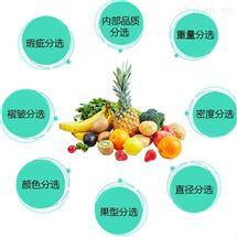 果蔬自动分拣机