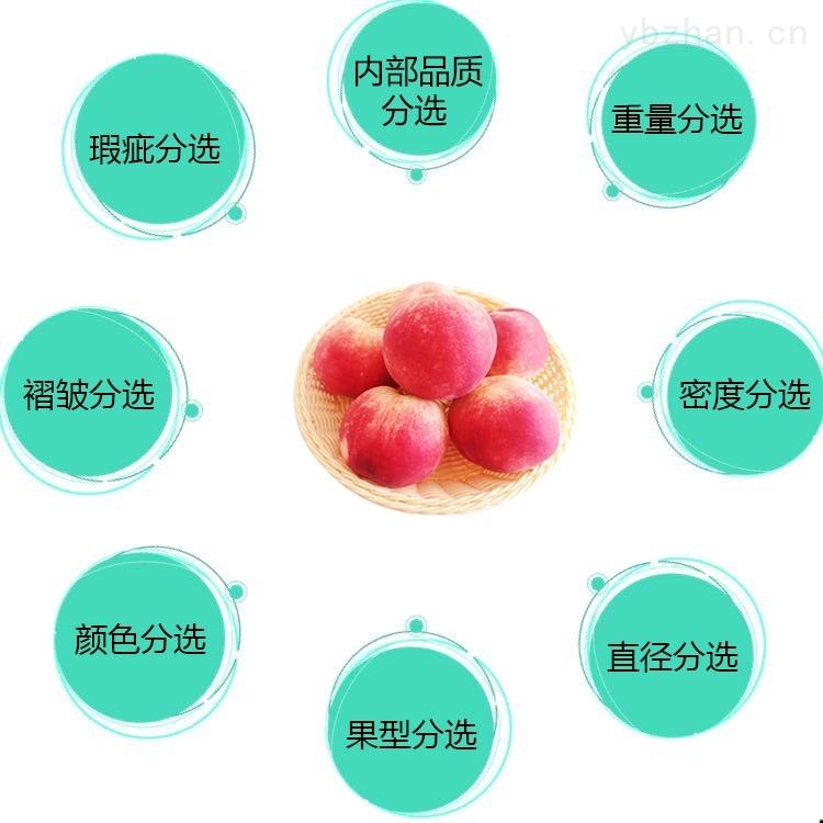 水蜜桃自动分选机