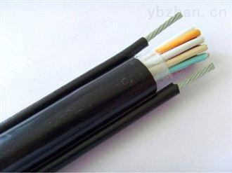 聚氯乙烯补偿电缆