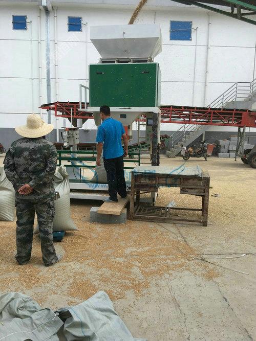 玉米称重包装机