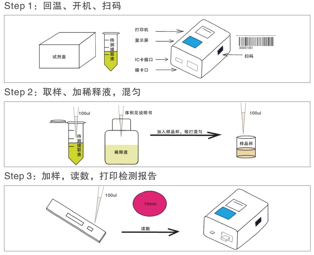 黄曲霉毒素荧光定量检测试纸条操作过程