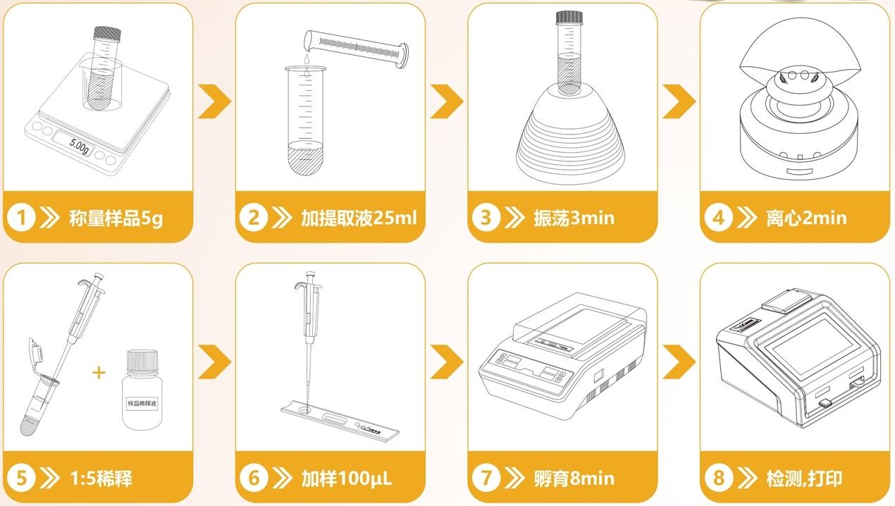 黄曲毒素检测卡检测流程
