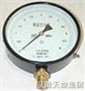ECWPG-100 /150型安徽天康高静压低差压型差压压力表