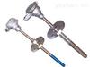 WRN2-430MM耐磨阻漏热电偶
