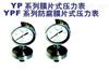 防腐膜片式压力表YPF系列