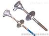 WRN-430M耐磨热电偶WRN-430M
