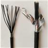 ZR-KVVP22屏蔽铠装控制电缆